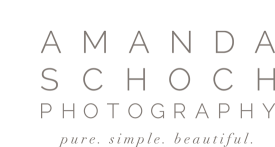Beautiful Silver Spring MD Newborn and Family Photography by Amanda Schoch Photography logo